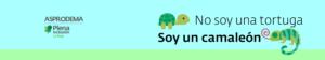 No soy una tortuga